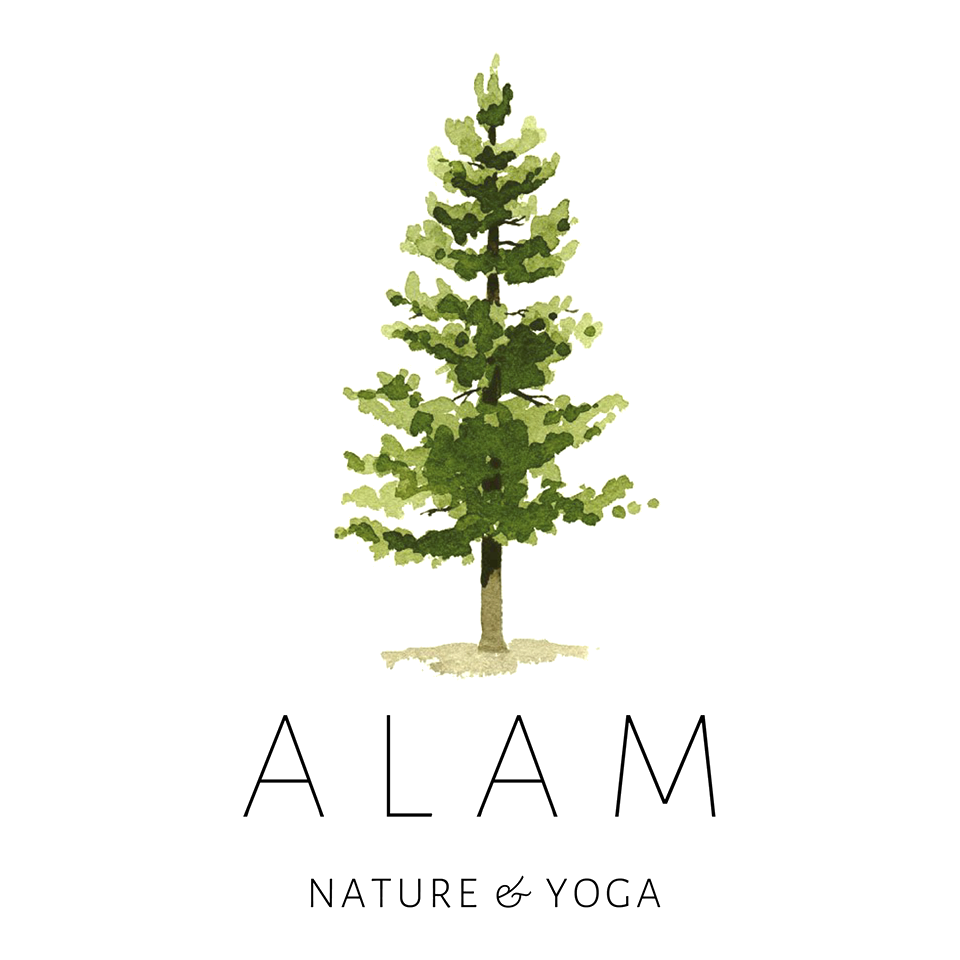 Alam nature & yoga